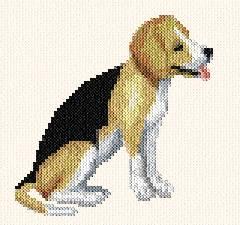 cross stitch pattern Beagle