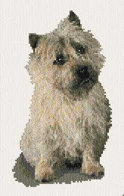 cross stitch pattern Cairn Terrie