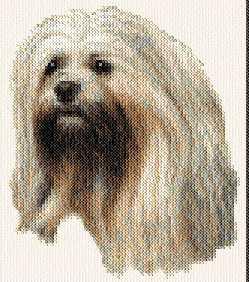cross stitch pattern Lhasa Apso