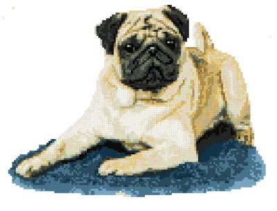 cross stitch pattern Puggley