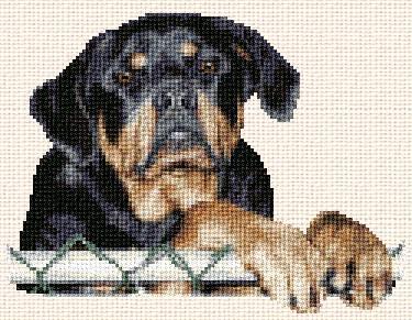 cross stitch pattern Kona (rotweiller);