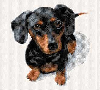 cross stitch pattern Dudley