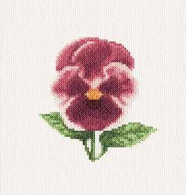 cross stitch pattern Pansy
