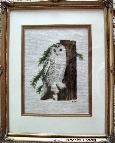 cross stitch pattern Snowy Owl