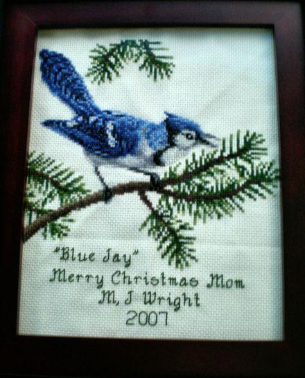 cross stitch pattern Bluejay