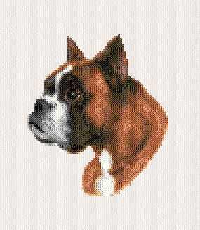 cross stitch pattern Boxer