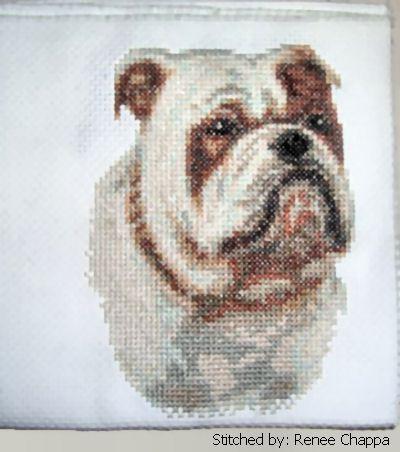 cross stitch pattern Bulldog