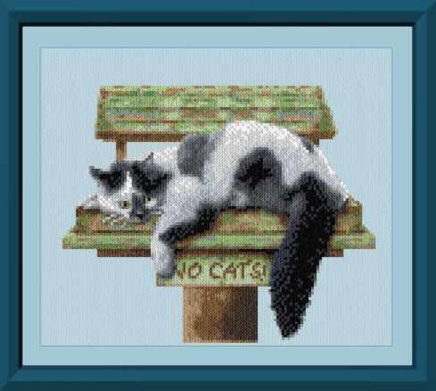 cross stitch pattern No Cats