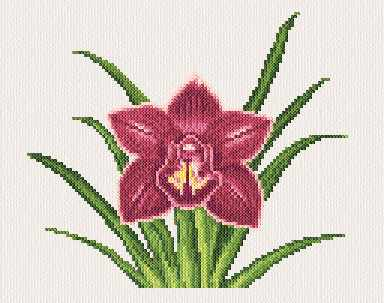 cross stitch pattern Orchid