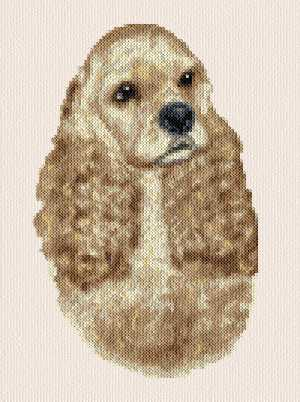 cross stitch pattern Jaz - American Cocker Spaniel