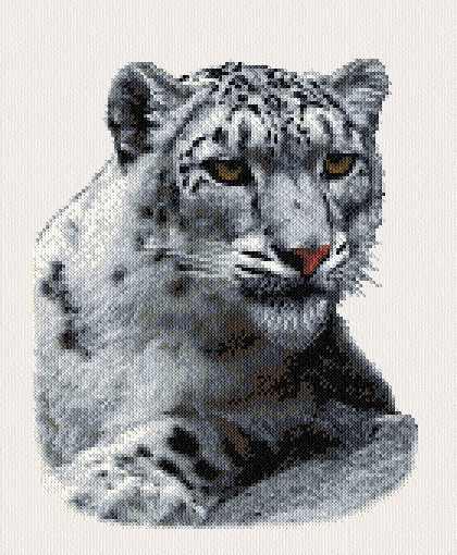 cross stitch pattern Snow Leopard
