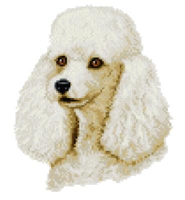 cross stitch pattern White Poodle