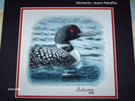 cross stitch pattern Canadian Loon