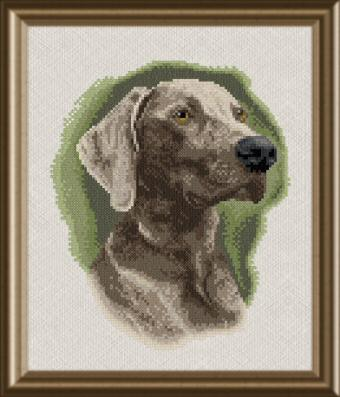cross stitch pattern Weimaraner