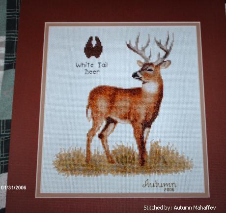 cross stitch pattern White Tail Deer