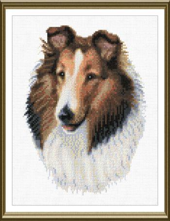 cross stitch pattern Collie
