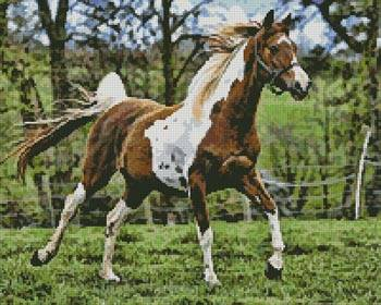 cross stitch pattern Arabian Horse