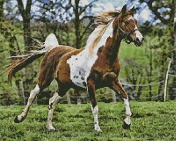cross stitch pattern Arabian Horse