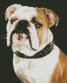 cross stitch pattern Bulldog