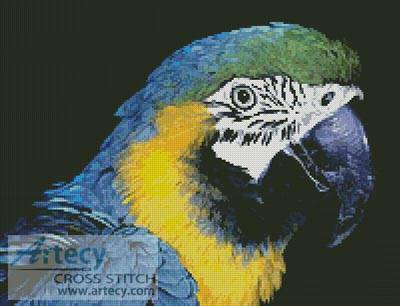 cross stitch pattern Blue and Yellow Macaw