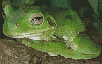 cross stitch pattern Green Tree Frog 2