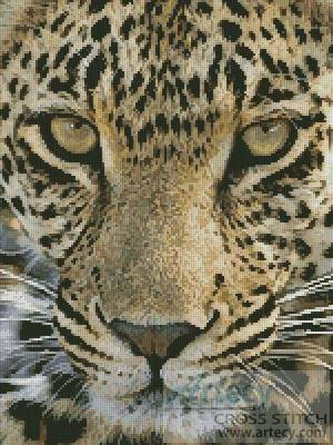 cross stitch pattern Leopard Close Up