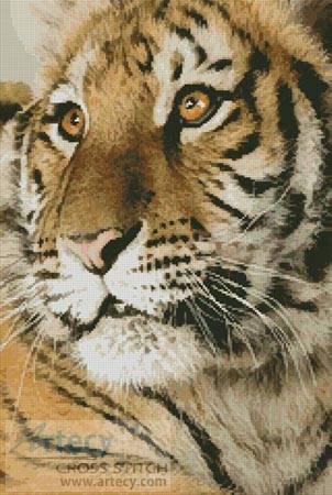 cross stitch pattern Bengal Tiger Cub