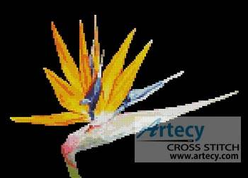 cross stitch pattern Bird of Paradise