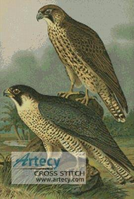 cross stitch pattern Birds 2