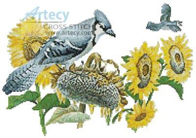 cross stitch pattern Blue Jay