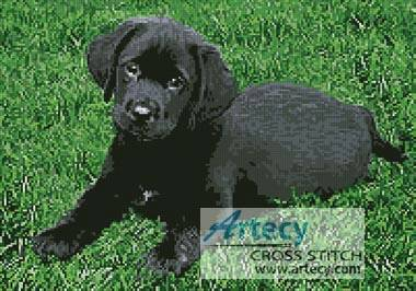 cross stitch pattern Black Labrador Puppy