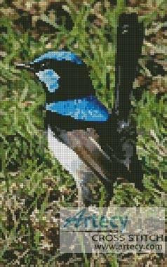 cross stitch pattern Blue Wren