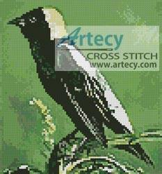 cross stitch pattern Bobolink