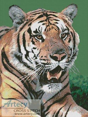 cross stitch pattern Bengal Tiger 2