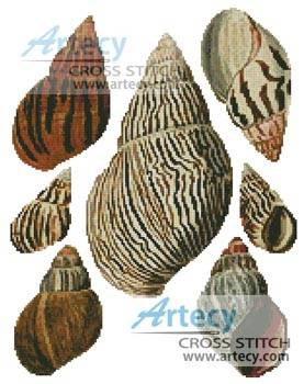 cross stitch pattern Bulla Shells