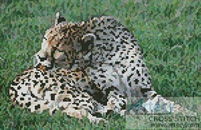 cross stitch pattern Cheetah