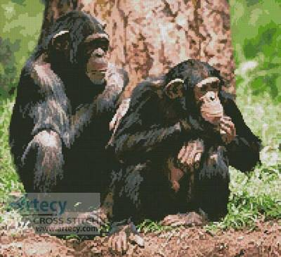 cross stitch pattern Chimpanzees