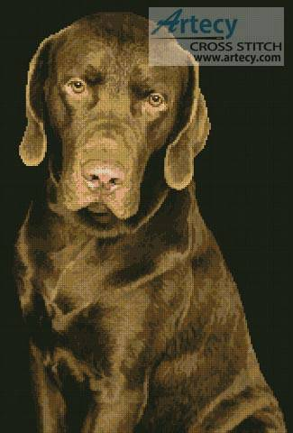cross stitch pattern Chocolate Lab