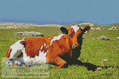 cross stitch pattern Cow