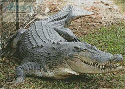 cross stitch pattern Crocodile