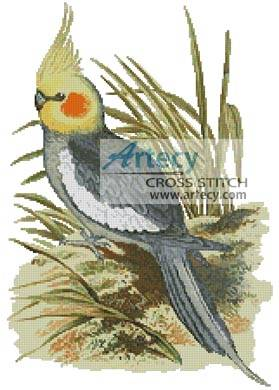 cross stitch pattern Cockatiel