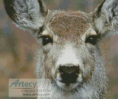 cross stitch pattern Deer Face
