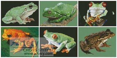 cross stitch pattern Frog Sampler