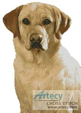 cross stitch pattern Golden Labrador