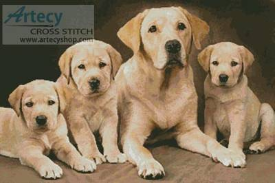 cross stitch pattern Golden Retrievers