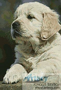 cross stitch pattern Golden Retriever Puppy
