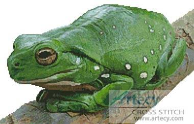 cross stitch pattern Green Tree Frog