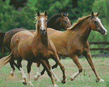 cross stitch pattern Horses 3