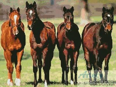 cross stitch pattern Horses