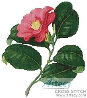 cross stitch pattern Japanese Camellia